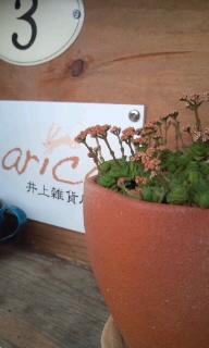 フェリスの種まきin浜田その2